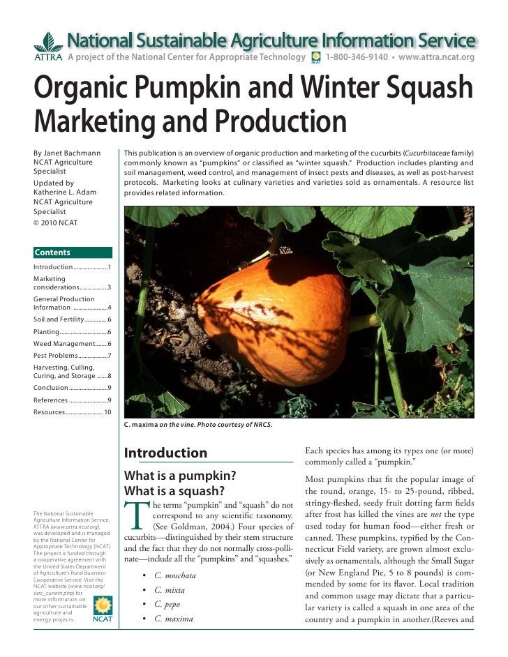 Organic Pumpkin and Winter Squash Marketing and Production