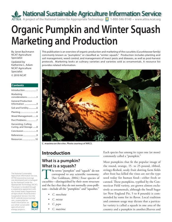 Organic Pumpkin and Winter Squash Marketing and Production
