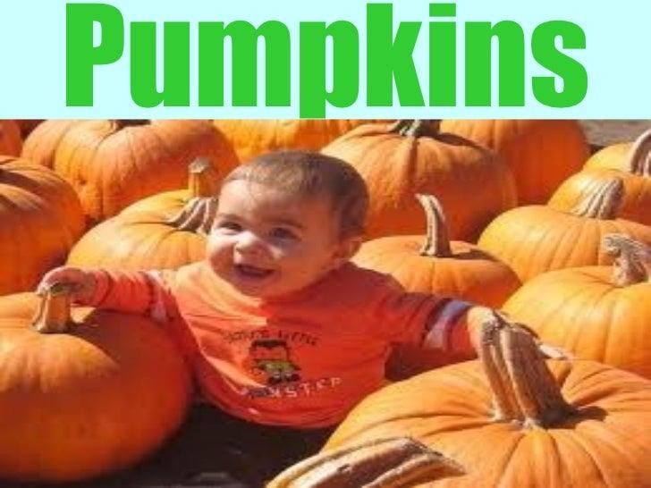 Pumpkins - The Power Food