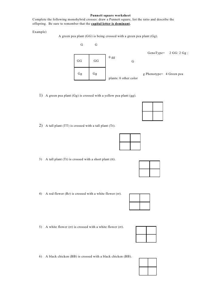 Genetics Practice Worksheet Free Worksheets Library – Genetics Problems Worksheet