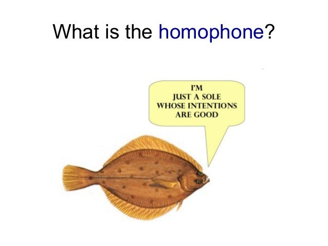 Puns Homophones And Homonyms