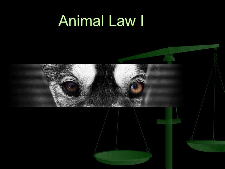 Animal Law I