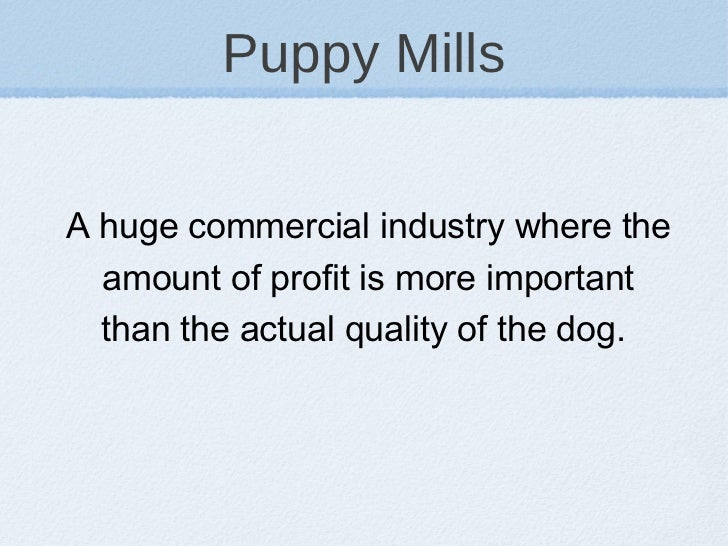 Puppy Mills <ul><li>A huge commercial industry where the amount of profit is more important than the actual quality of the...