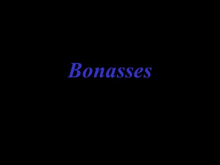 Bonasses