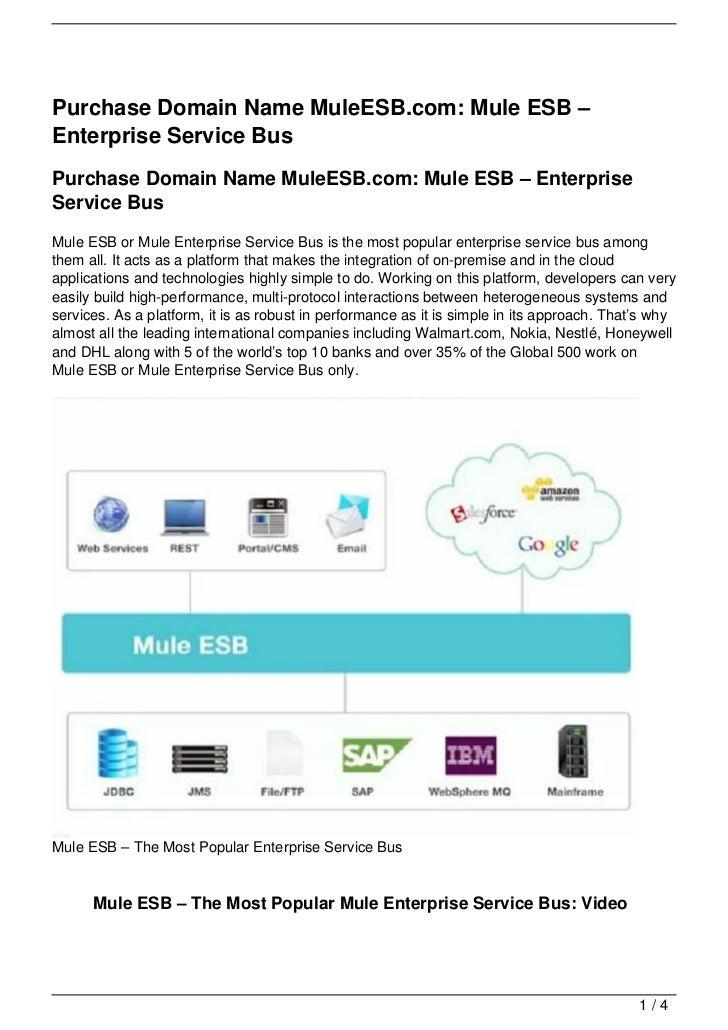 Purchase Domain Name MuleESB.com: Mule ESB –Enterprise Service BusPurchase Domain Name MuleESB.com: Mule ESB – EnterpriseS...