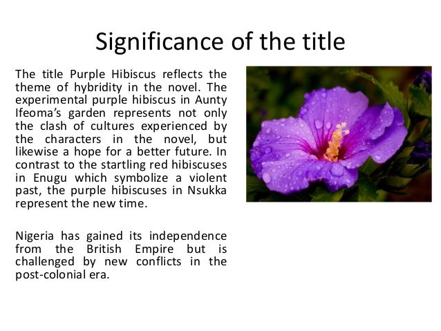 themes explored in purple hibiscus The aim of this is to examine how adichie's purple hibiscus is typical of how the   his action brings us to an important structuralist theme, namely: that change in  an  in the following section, therefore, we will explore instances of this new.