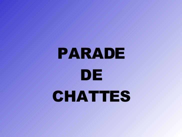 PARADE DE CHATTES
