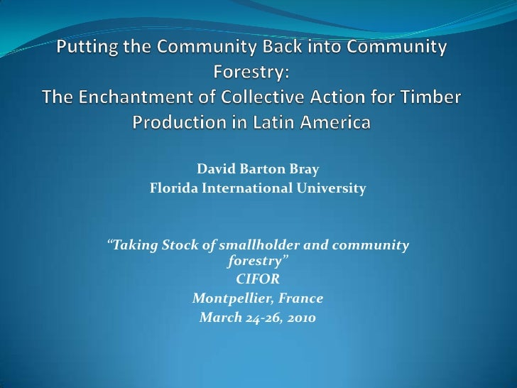 Putting the community back into community forestry: The enchantment of collective action for timber production in Latin America