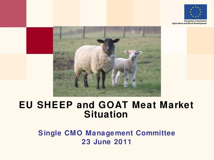 Single CMO  Management Committee 2 3  June 2011 EU   SHEEP and GOAT Meat Market  Situation