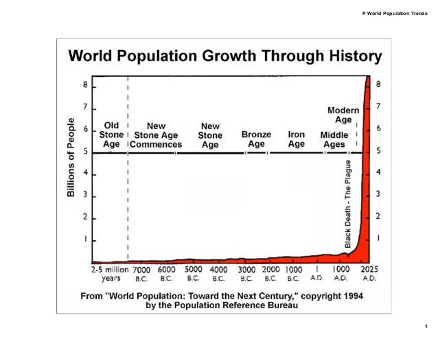 P World Population Trends