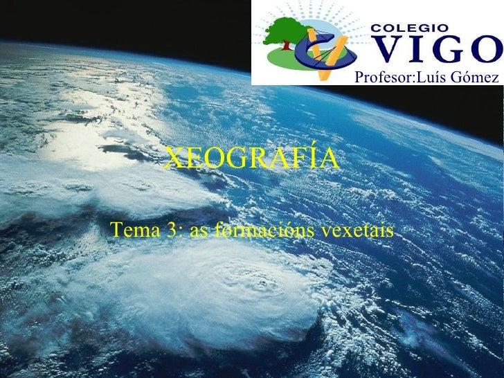 XEOGRAFÍA Tema 3: as formacións vexetais Profesor:Luís Gómez