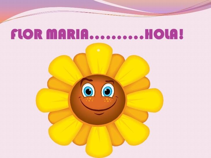 FLOR MARIA……….HOLA!<br />