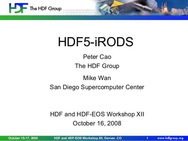 HDF5 iRODS
