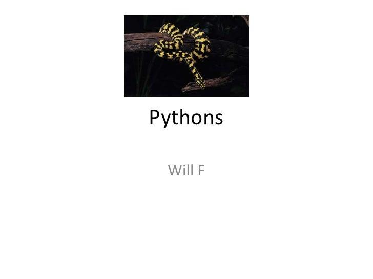 Pythons<br />Will F<br />