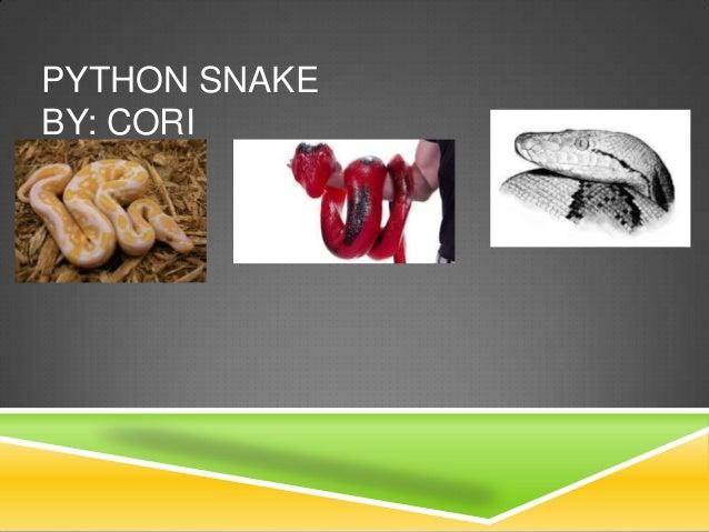 Python 9