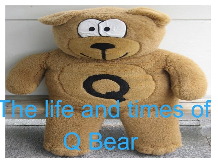 The life and times of  Q Bear