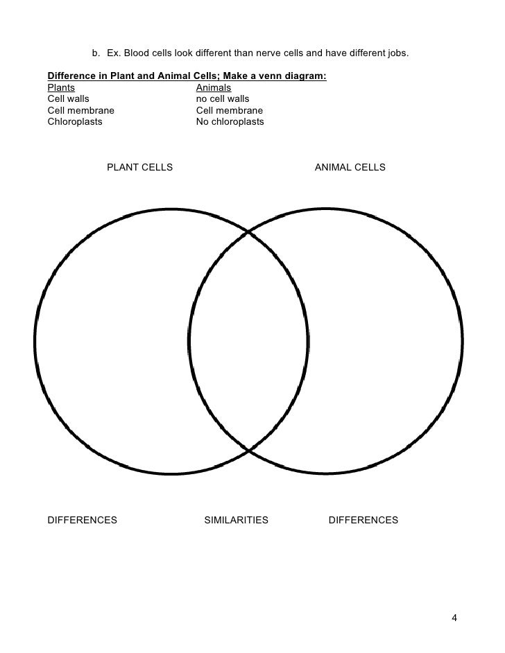 Plant Cells And Animal Cells Venn Diagram Kordurorddiner