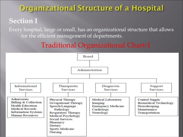 Organizational chart of hospital 5803831 only firstfo altavistaventures Choice Image