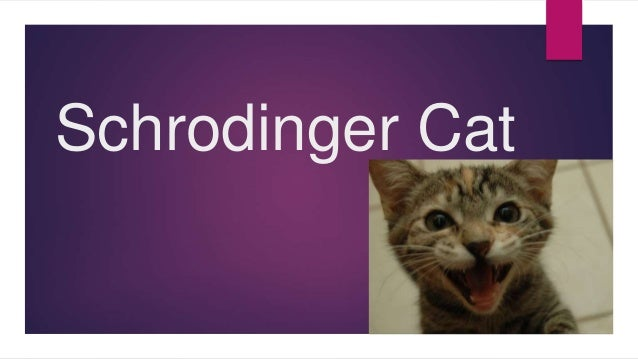 Schrodinger cat (Copenhagen & Many-worlds interpretation + phase ...