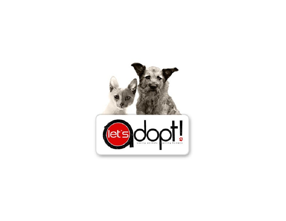 Introduction to Let's Adopt!