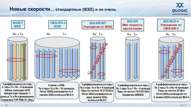100G-KR-4 IEEE Rx + Tx 4