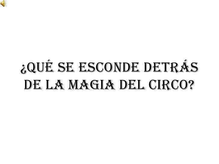 ¿Qué se esconde detrás de la magia del Circo?