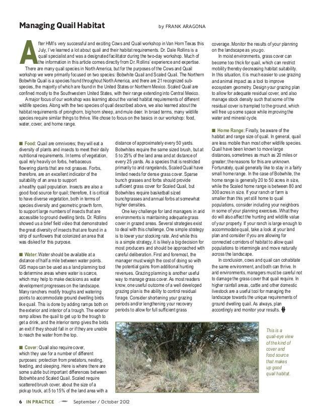 Managing Quail Habitat                                                           by Frank araGonaA           fter HMI's ve...