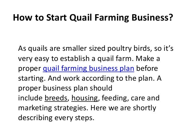 Quail farming business plan pdf
