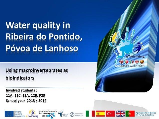 AquaProject/ProjetoAgua Water quality in Ribeira do Pontido, Póvoa de Lanhoso Using macroinvertebrates as bioindicators In...
