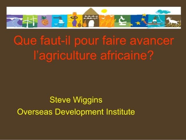 Que faut-il pour faire avancer l'agriculture africaine?