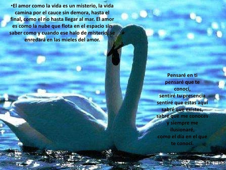 <ul><li>El amor como la vida es un misterio, la vida camina por el cauce sin demora, hasta el final, como el río hasta lle...