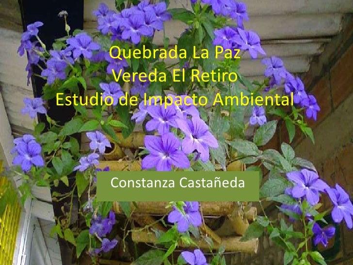 Quebrada La Paz Vereda El RetiroEstudio de Impacto Ambiental<br />Constanza Castañeda<br />