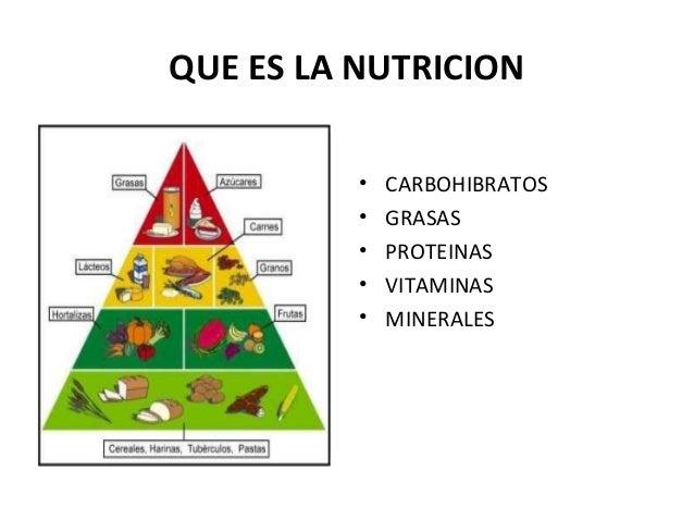 QUE ES LA NUTRICION • CARBOHIBRATOS • GRASAS • PROTEINAS • VITAMINAS • MINERALES