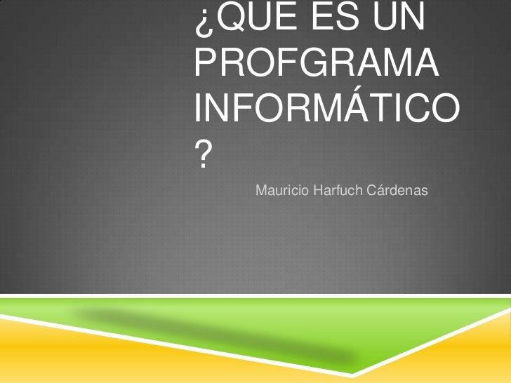 ¿QUÉ ES UNPROFGRAMAINFORMÁTICO?  Mauricio Harfuch Cárdenas