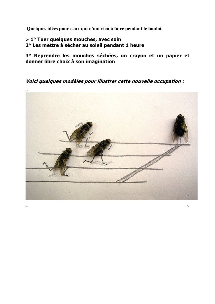 Quelques idées pour ceux qui n'ont rien à faire pendant le boulot  > 1° Tuer quelques mouches, avec soin 2° Les mettre à s...