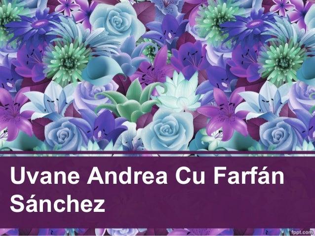 Uvane Andrea Cu Farfán Sánchez