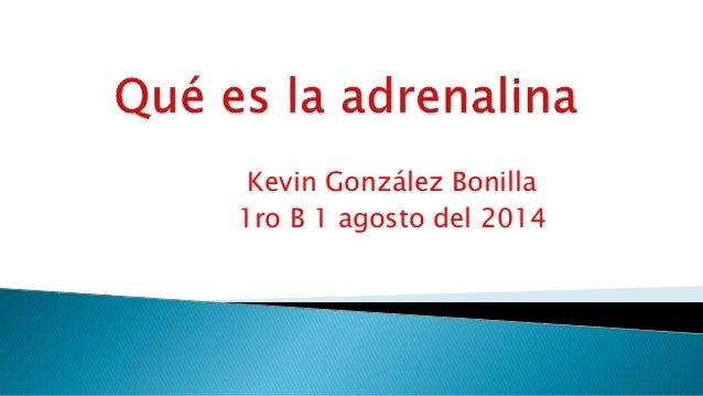 Kevin González Bonilla 1ro B 1 agosto del 2014