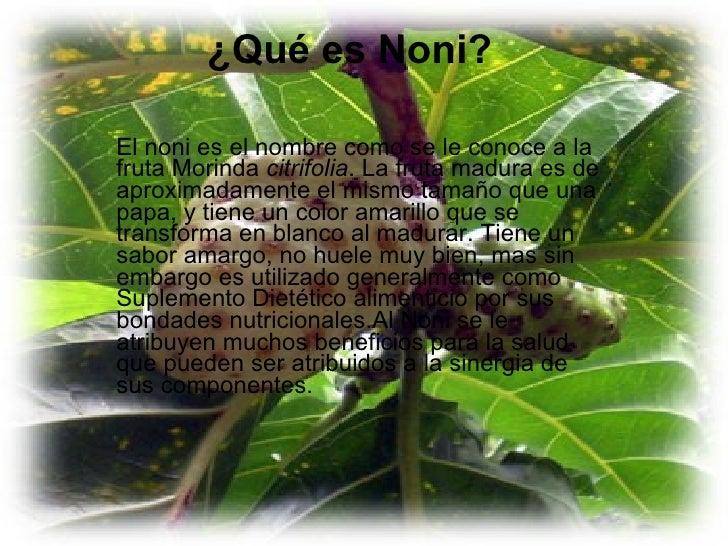 ¿Qué es Noni? El noni es el nombre como se le conoce a la fruta Morinda  citrifolia . La fruta madura es de aproximadament...