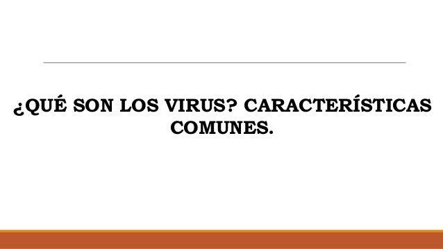 ¿QUÉ SON LOS VIRUS? CARACTERÍSTICAS COMUNES.