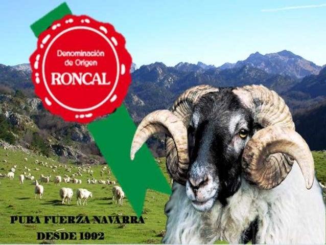 ¿Quiénes somos? • Creada en 1992 • Situados en el Pirineo navarro • Elaboramos productos provenientes de la oveja Queso – ...