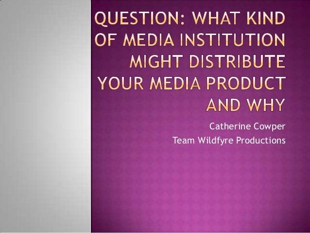 Question 3   media institutions