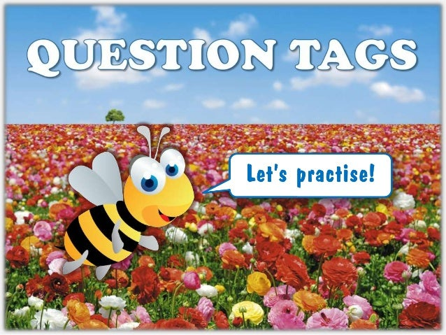 Question tags - Areal Editores