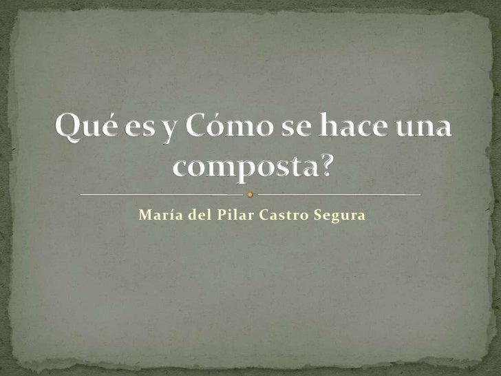 María del Pilar Castro Segura<br />Qué es y Cómo se hace una composta?<br />
