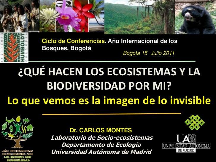 ¿Qué hacen los ecosistemas de bosques y la biodiversidad por mí? - Carlos Montes