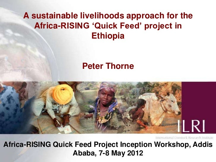 A sustainable livelihoods approach for the        Africa-RISING 'Quick Feed' project in                      Ethiopia     ...