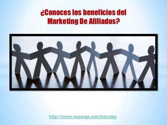 ¿Conoces los beneficios del  Marketing De Afiliados?  http://www.wasanga.com/halcalay
