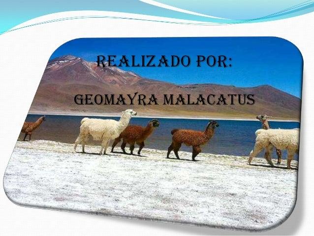 REALIZADO POR:GEOMAYRA MALACATUS