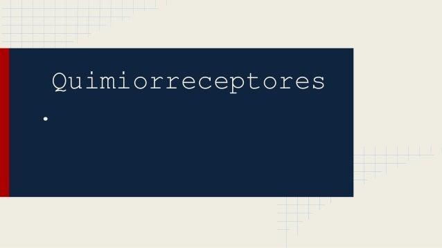 Quimiorreceptores .