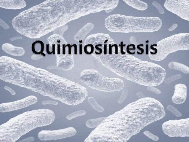 ÍNDICE: • Características generales • Quimiosíntesis • Fases de la quimiosíntesis • Quimiosíntesis: una forma metabólica e...