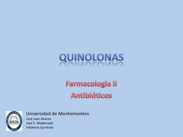 Universidad de MontemorelosJosé Juan ÁlvarezJosé E. MaldonadoIndalecio Quintana